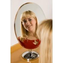 Mirror/Model