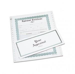 Box of 100 Appraisal Envelopes